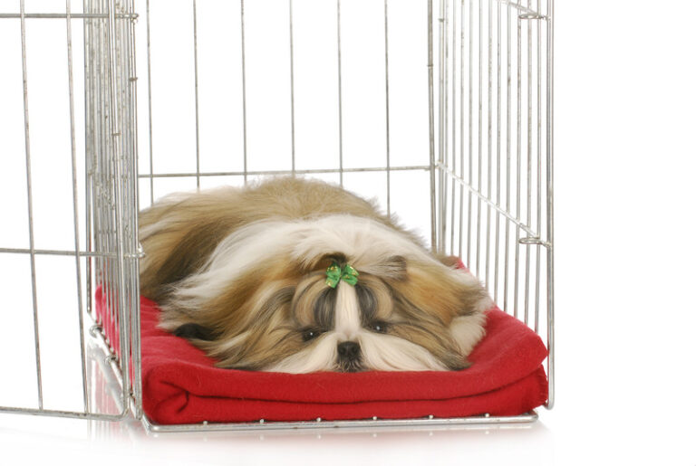 how to make a dog crate cover