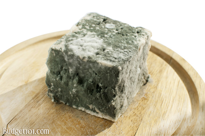 moldy-cheese-toss-it-or-save-it