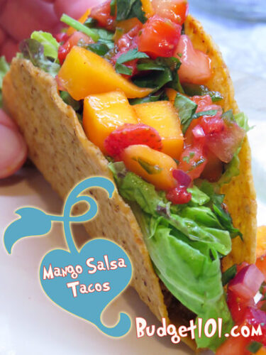 5ca00e11d34f9 mango salsa
