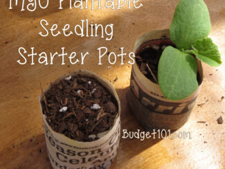 Make Your Own Plantable Seed Starter Pots