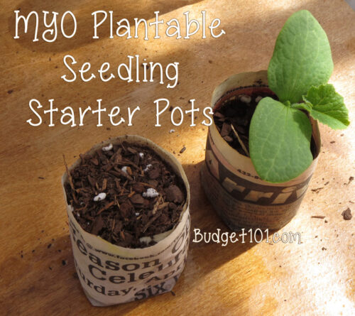 b101 seedling pots fb