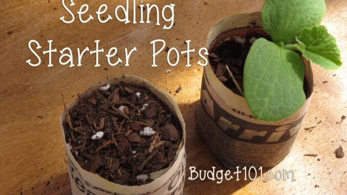 b101 seedling pots fb