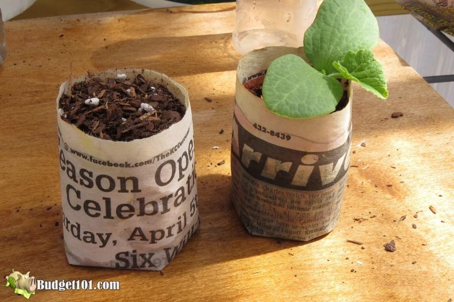 b101-seedling-starter-pots-step-7