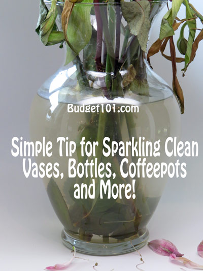 how-to-clean-vases-bottles-easily