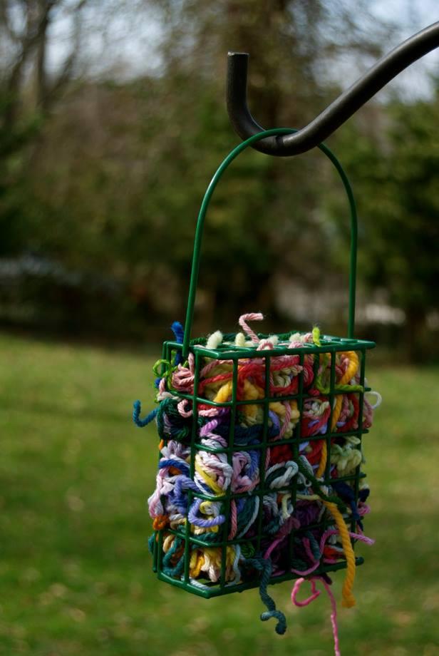 bird-nesting-help-encouraging-birds-to-stick-around