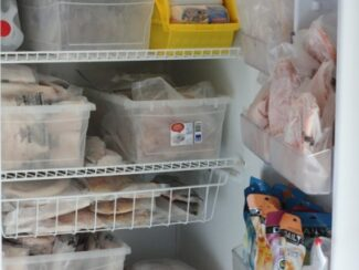 simple freezer organization