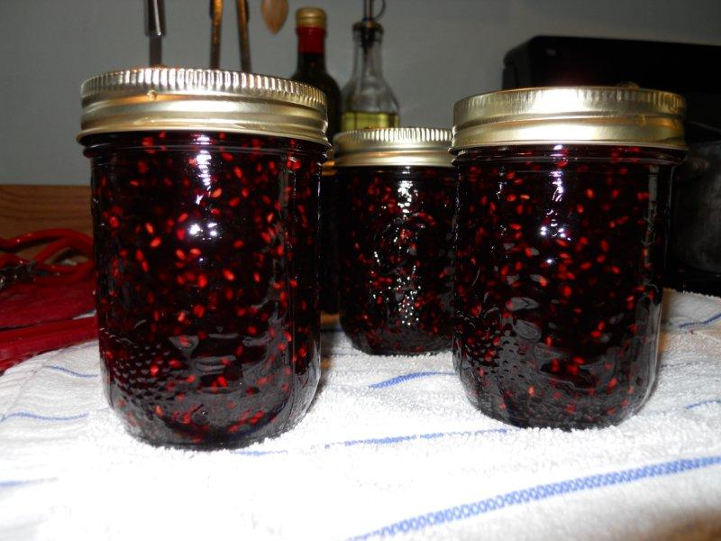 myo-blackberry-jam
