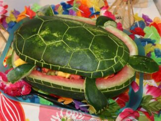 b101 watermelon turtle sm