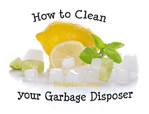 garbage-disposal-cleaner