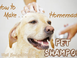 myo pet shampoo