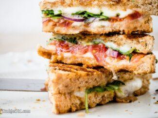 b101 myo panini 2