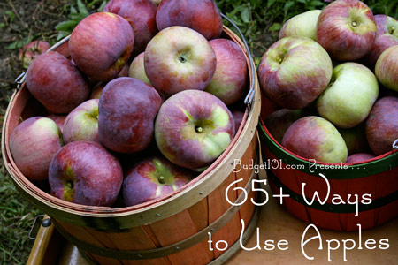 apples-how-to-use-them