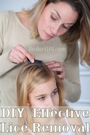 diy non toxic lice removal