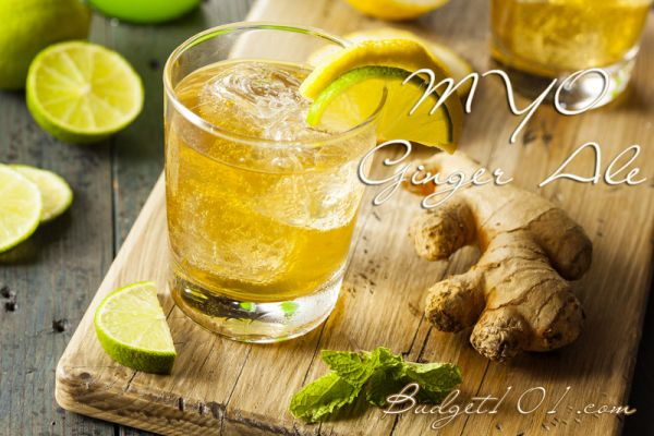 myo-ginger-ale-recipe-for-pain-inflammation