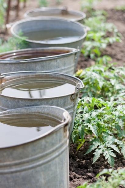 warming-your-garden-naturally