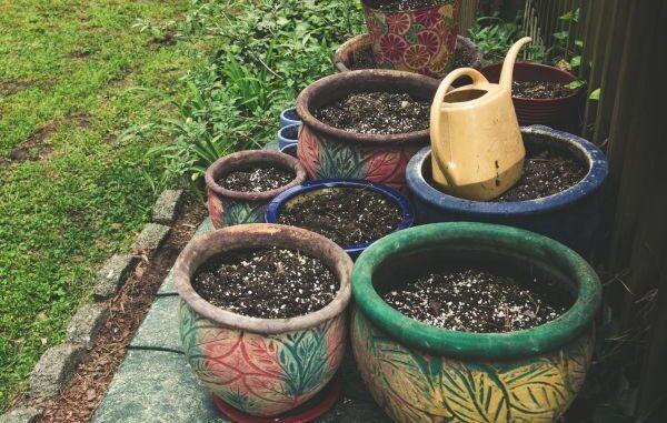 5ca00921e6047 how to create a budget garden