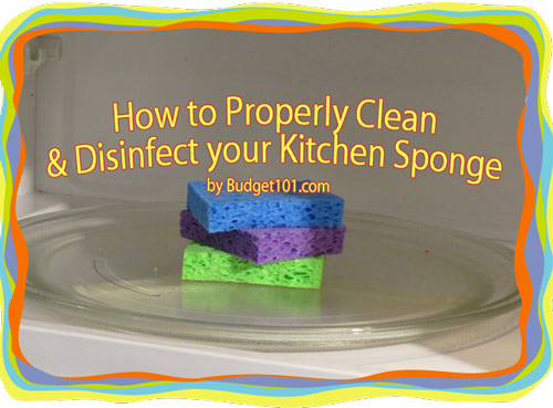 how-to-clean-sanitize-a-sponge