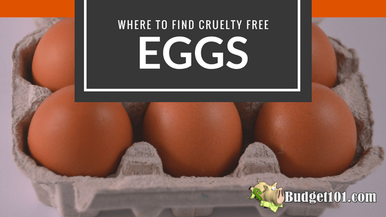 where to find cruelty free eggs
