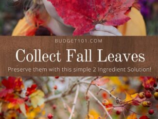preserve beautiful fall branches create your own swags