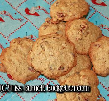 cranberry-hootycreeks-cookie-mix