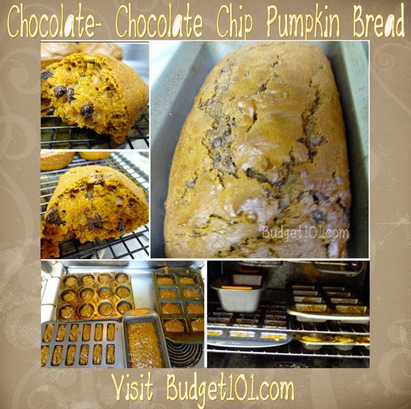 chocolate-chocolate-chip-pumpkin-bread