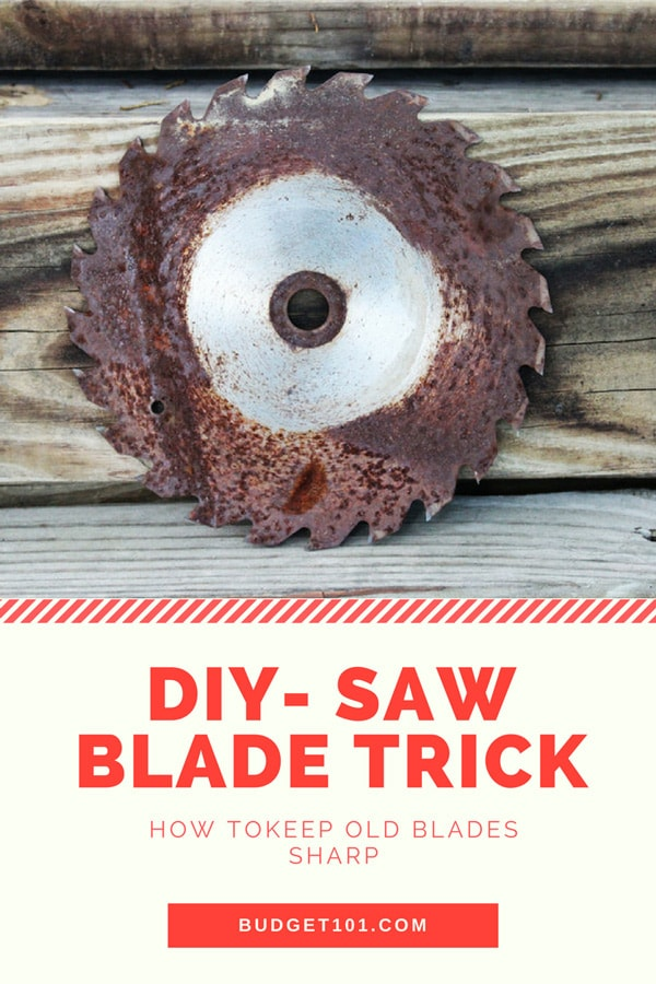 diy-how-to-keep-a-saw-blade-sharp