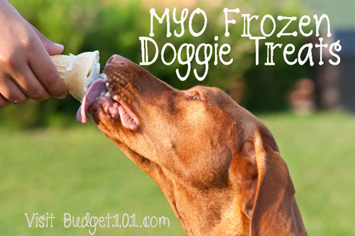 icy-paws-frozen-homemade-dog-treats