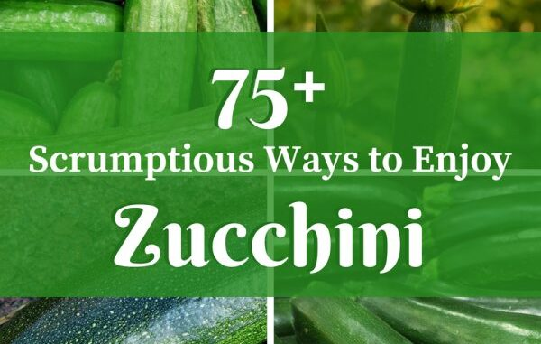 5ca00786af20e 75 scrumptious ways to enjoy zucchini