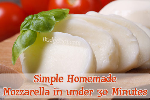 myo-mozzarella-in-30-minutes-or-less