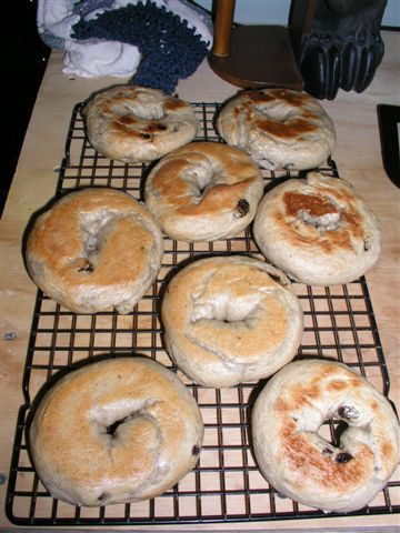 make-your-own-bagels