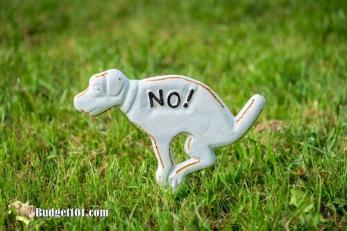 b101 repel dogs cats garden
