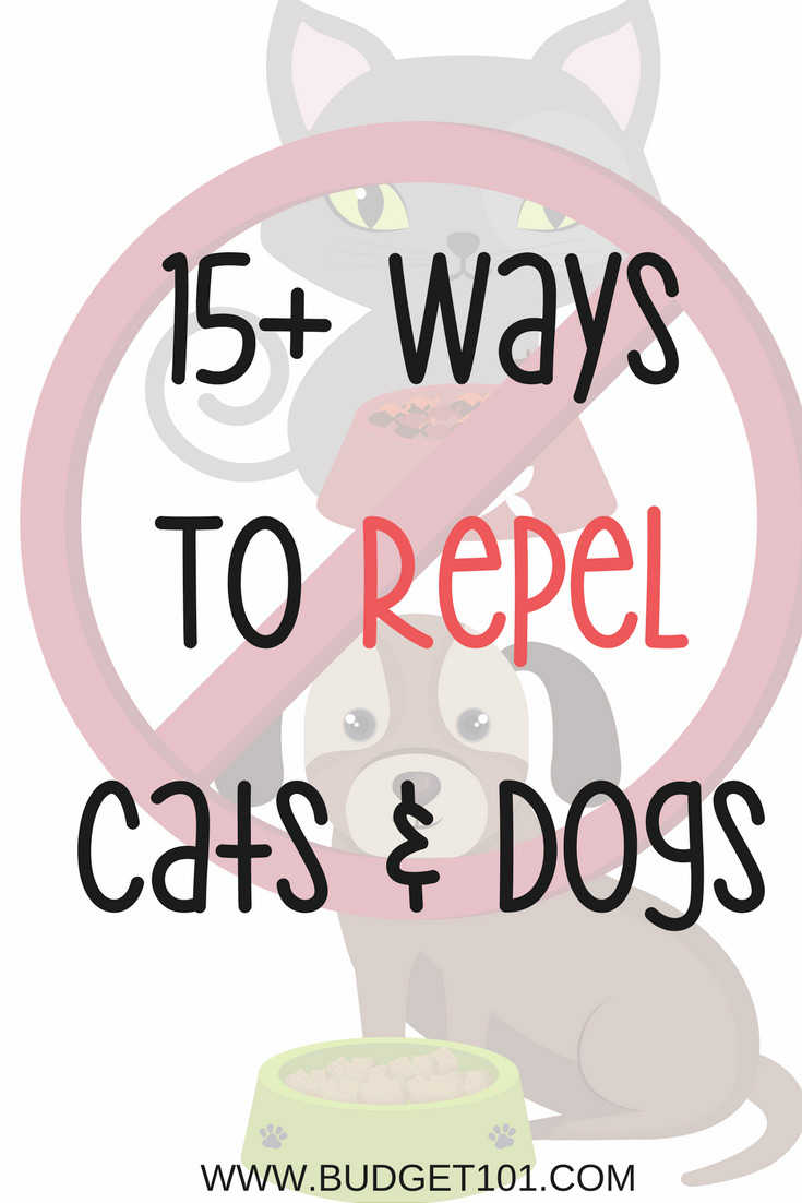 Cats and Dogs can wreak havoc on a garden or landscaping by digging and/or (Worse!) near your plants, here are 15+ ways to repel dogs and cats from your garden #Gardening #Budget101 #Pets #DirtCheap