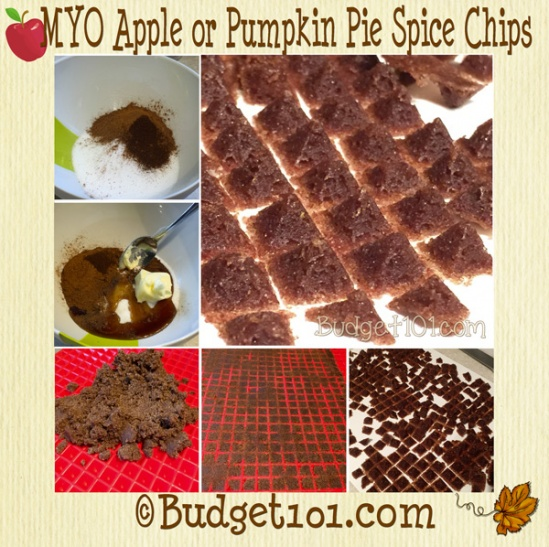 apple-or-pumpkin-pie-spice-chips