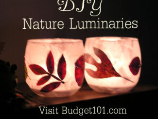 essence of fall nature luminaries 2