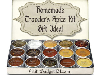 homemade spice sampler or easy travel set