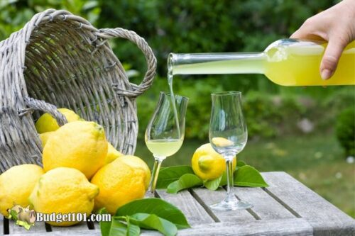 b101 homemade limoncello 1