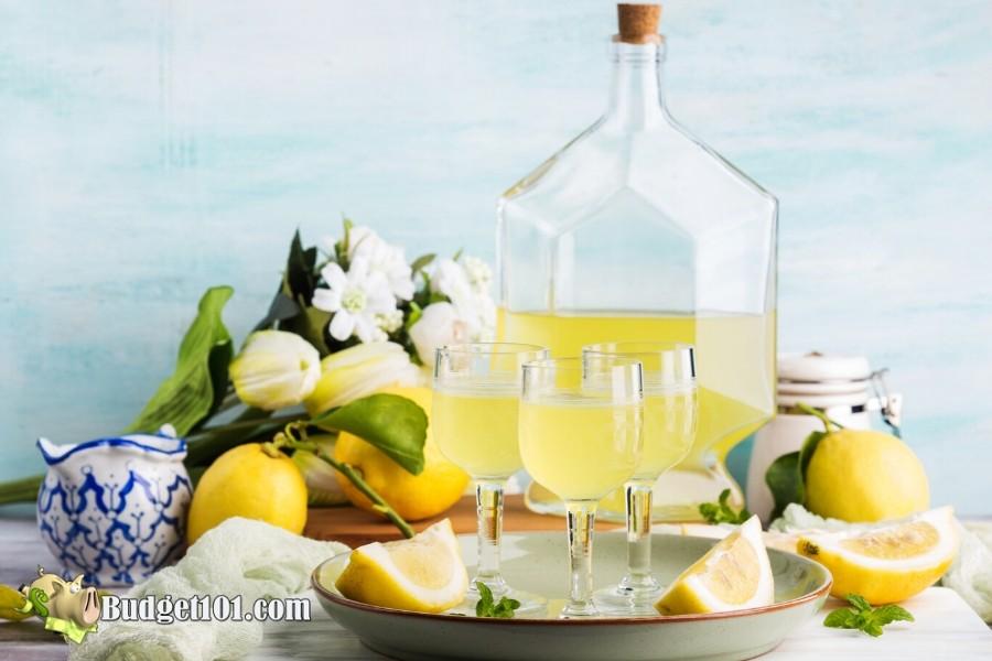 b101-homemade-limoncello