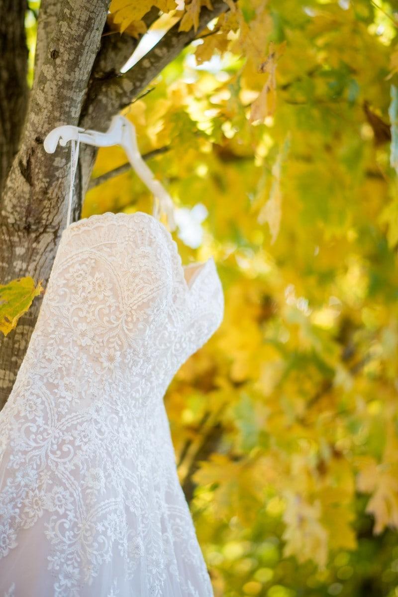 b101 Frugal wedding dress