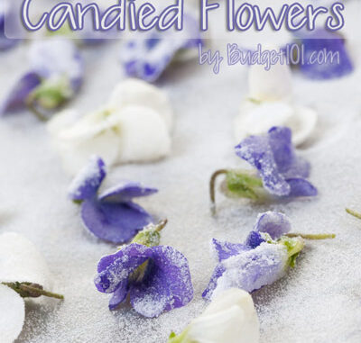 make your own candied flowers