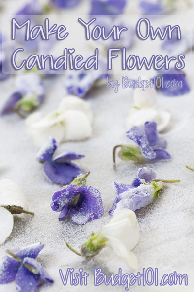 make-your-own-candied-flowers