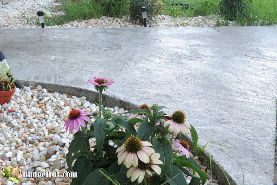 DIY Slate Walkway - wet look