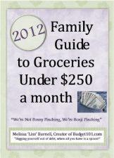 Groceries under $250