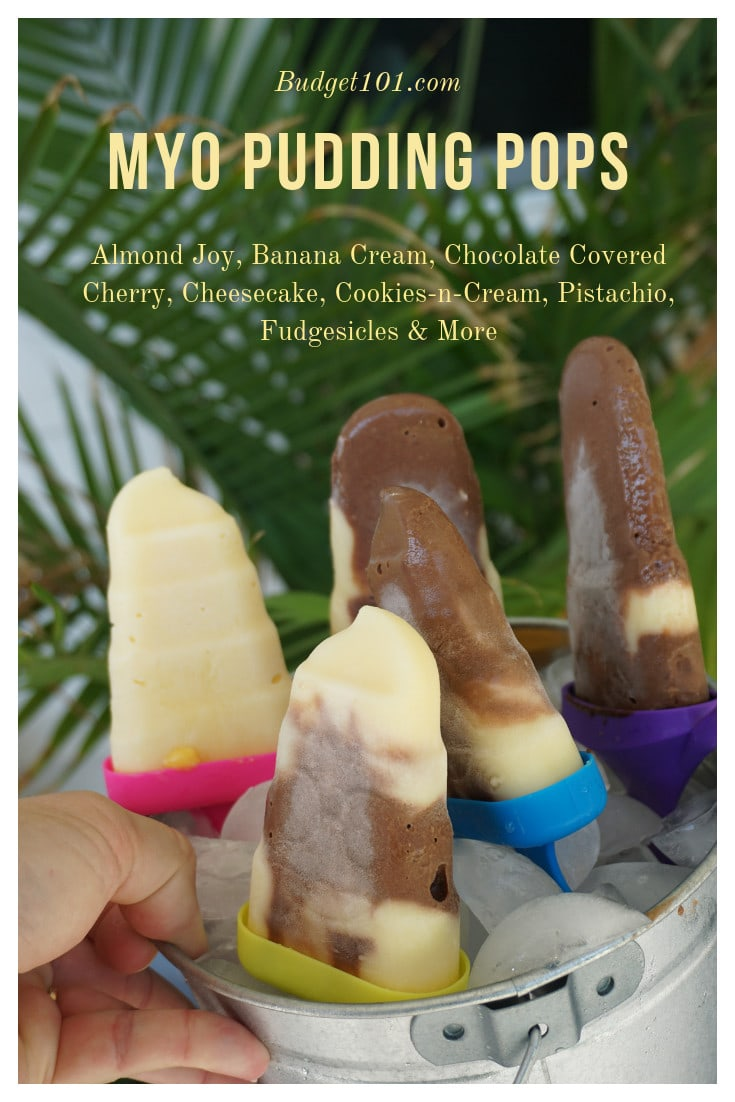 Frozen Pudding Pops- Fudgesicle Recipes