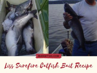 Liss-Surefire-Catfish-Bait-recipe