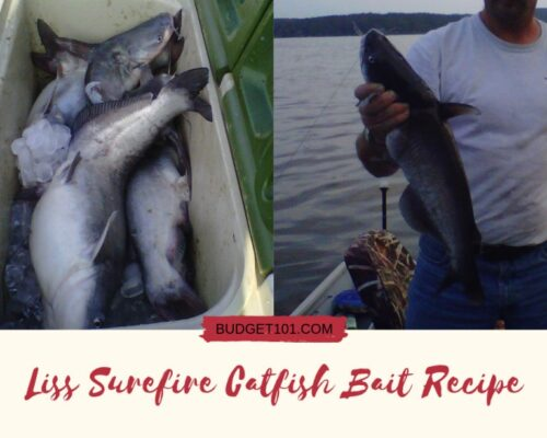 Liss Surefire Catfish Bait Recipe sm
