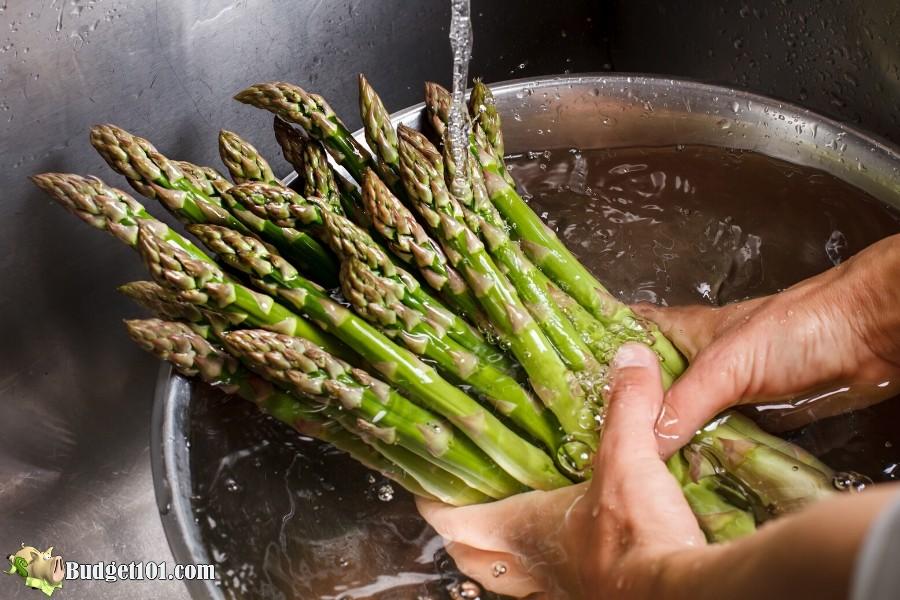 b101-fruit-veggie-wash-cleaner