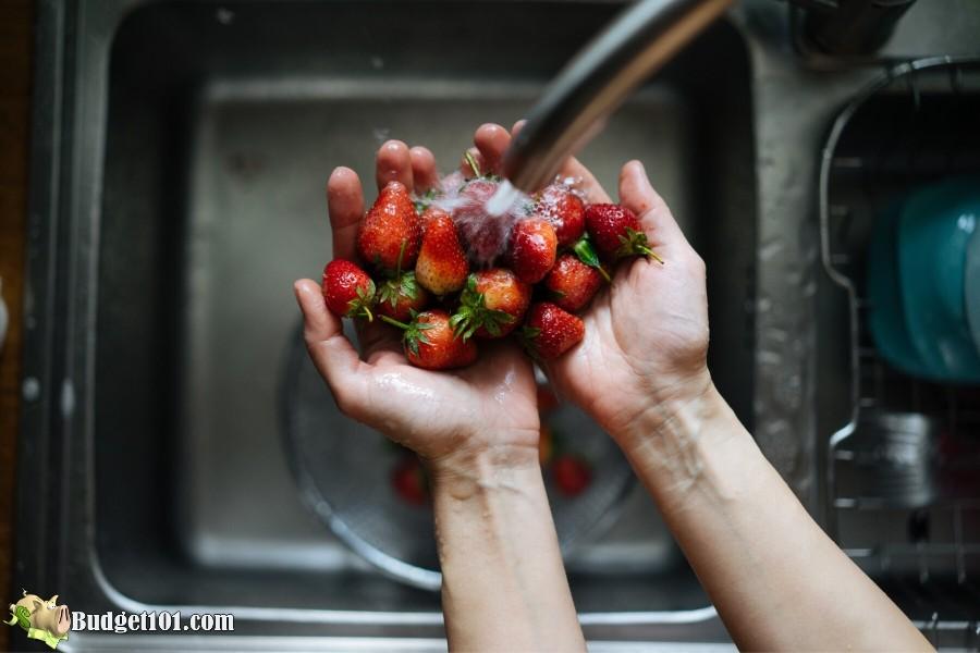 b101-fruit-veggie-washing-berries