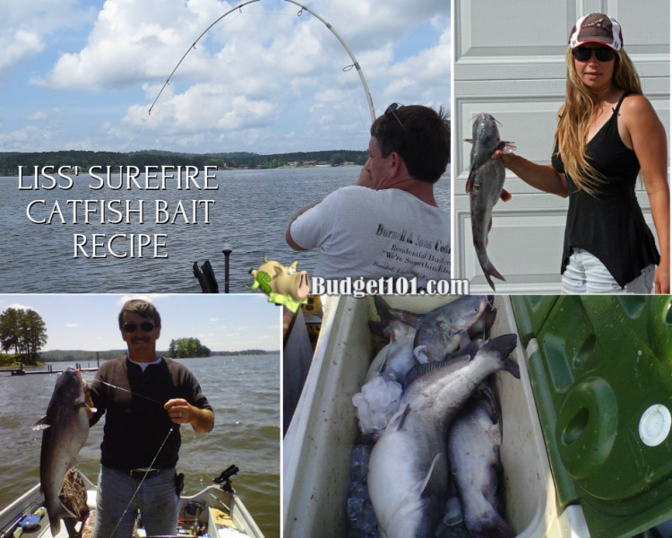 Budget101 Surefire Catfish Bait Recipe
