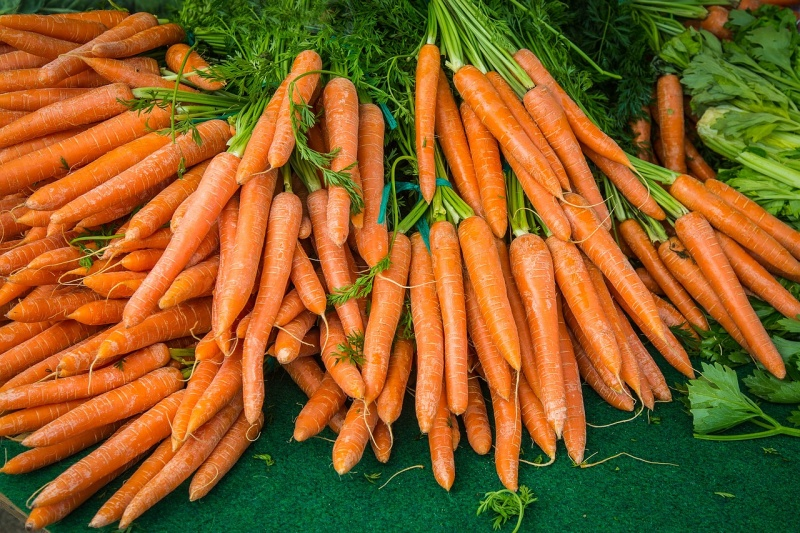 How to Grow Carrots with Coffee