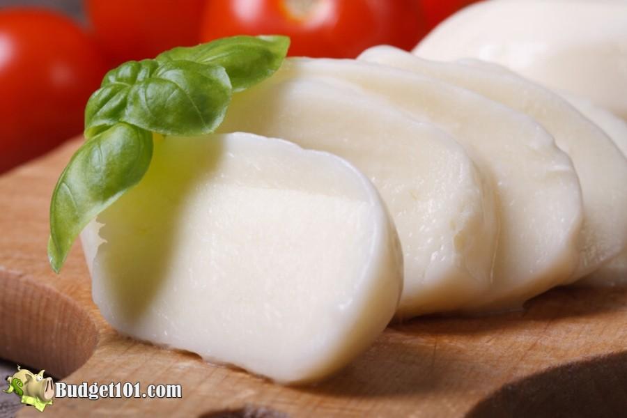 B101-homemade-mozzarella-cheese (2)